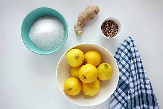 limon-tursusu-mbcb-01